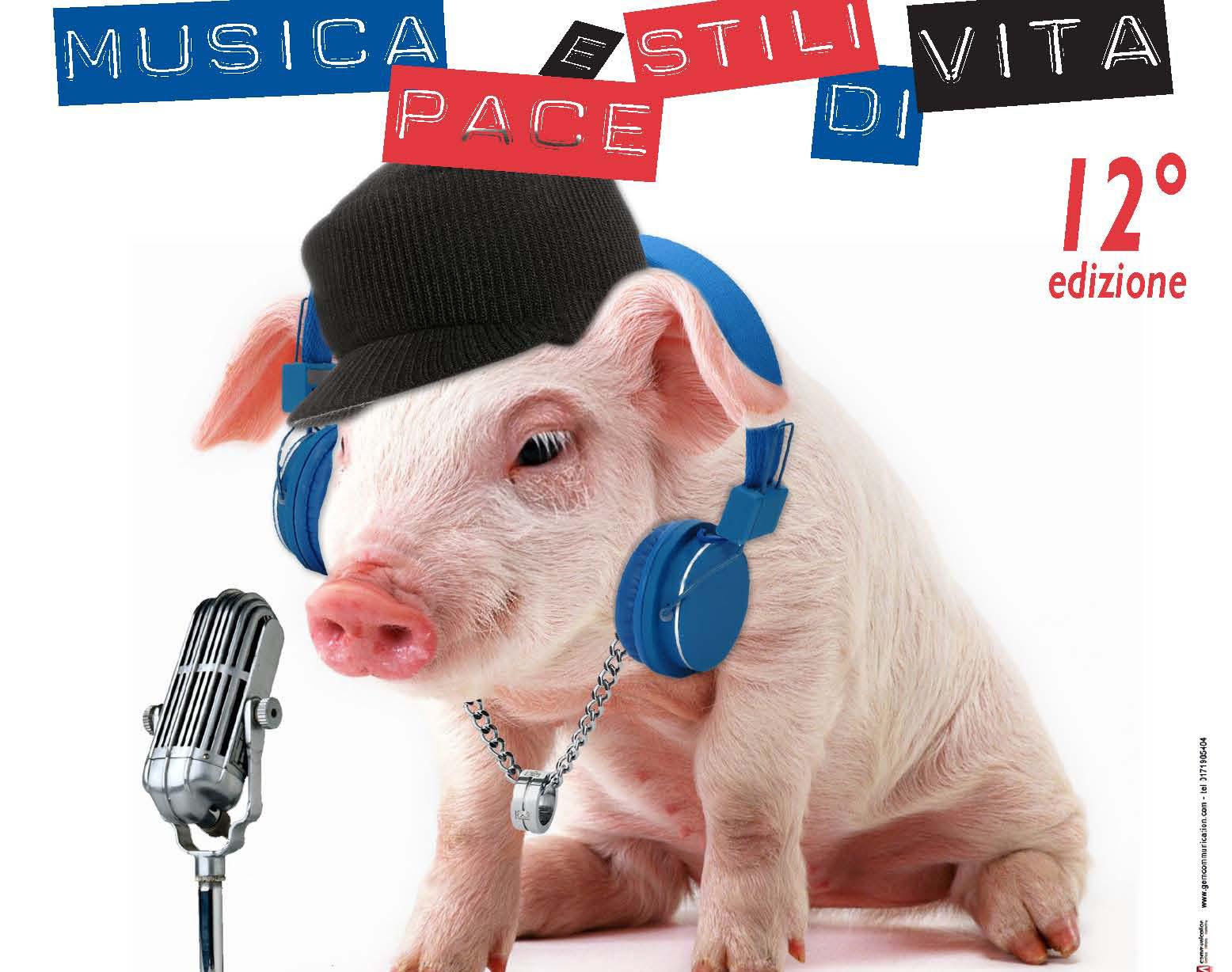 Aclinfestivalrock: musica e solidarietà